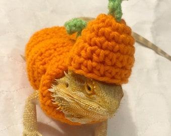 Crocheted Adult pumpkin bearded dragon costume | bearded dragon costume | bearded dragon clothing