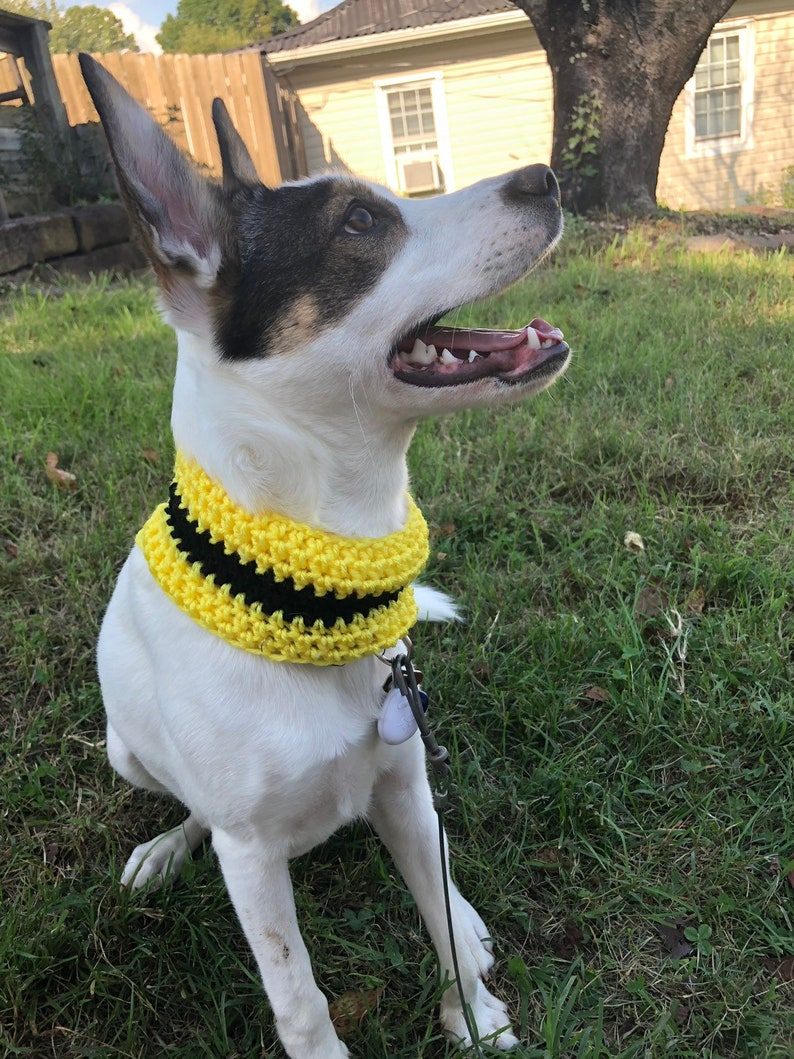 dog infinity scarf house colors dog scarf House colors dog cowls