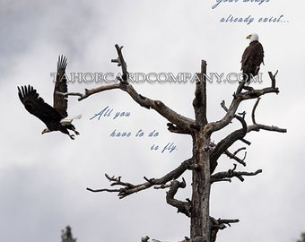 All You Have to Do Is Fly - American Bald Eagle Digital Download