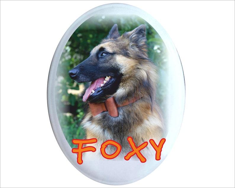 dog decor pet sign dog signs funny dog sign POMERANIAN DOG art portrait dog lover gift dog sign Dog signs for a home gift dog lover