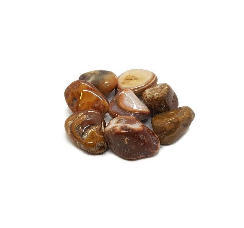 Tumbled Natural Petrified Wood  Tumble Stone  Fossil Wood  image 0