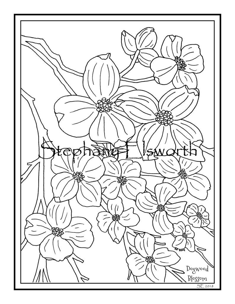 Dogwood Blossoms 8 1 2 X 11 Printable Instant Digital Download Etsy