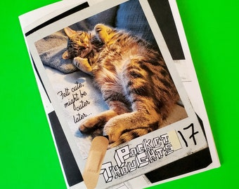 Pocket Thoughts #17 - a zine with art, rants, poems, photos, comics, and thoughts to make you giggle n' ponder (+ a cute kitty on the cover)