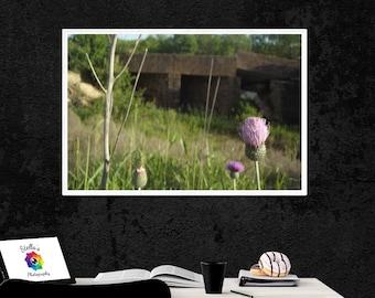 Purple Wildflower with Bridge, Printable Photography, Wall Art, 5x7, Digital File, Downloadable