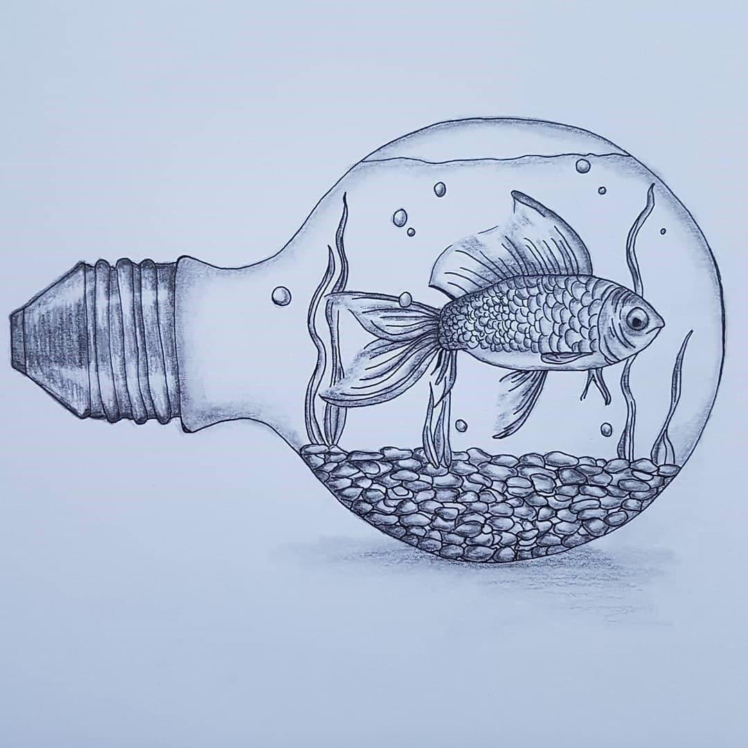 Fish pencil art 210 x 297 mm on artist paper