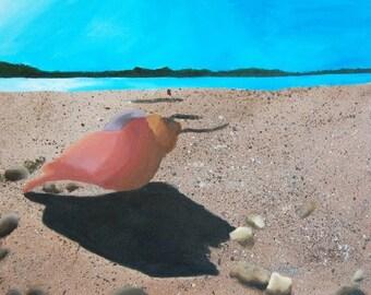 Cedar Shell painting