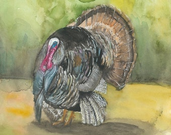 Wild Turkey Abstract Watercolor Painting Animal Art Print by Artist DJ Rogers