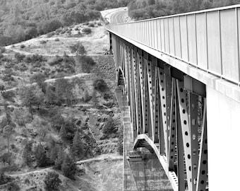 Forest Hill Bridge Black and white