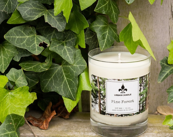Pine Forest Soy Candle | 14oz.