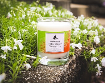 Watermint and Clementine Soy Candle   14 oz