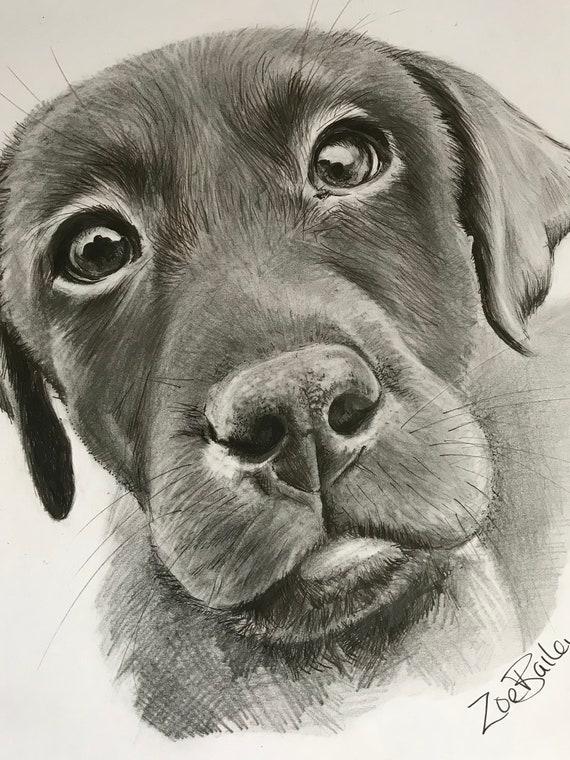 original artwork drawing of a labrador big eyes etsy