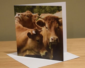 GIRLS DAY OUT -   Blank Greeting Cards