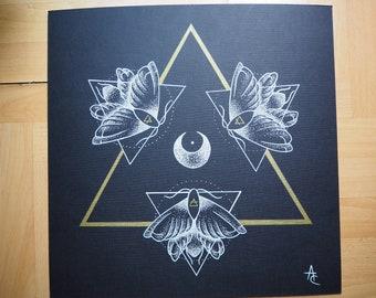 White butterflies Occult