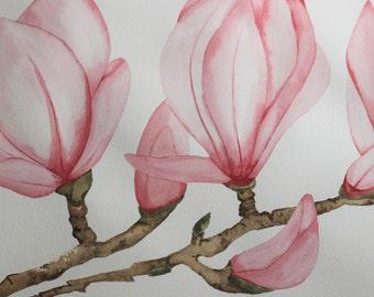 Watercolor Originaly Handpainted Magnolia 50x50. Wedding Gift Idea.