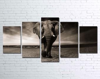 Elephant 5pc Canvas Set