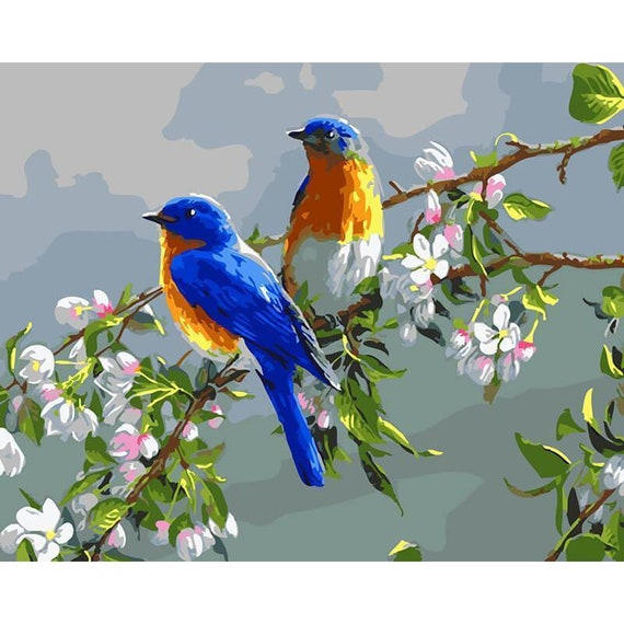Paint By Numbers Kit Parrot Animals 40CMx50CM Canvas