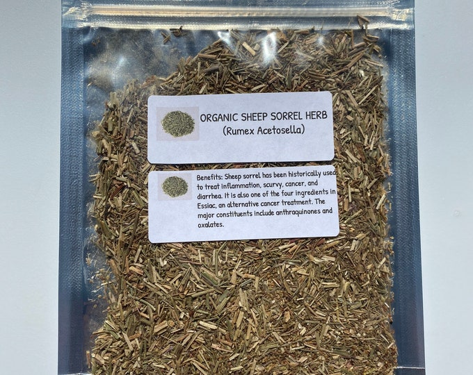 Organic Sheep Sorrel (Rumex acetosella)