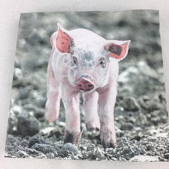 5  x   Paper Party Napkins  for Decoupage Pig Piglet Napkin Art