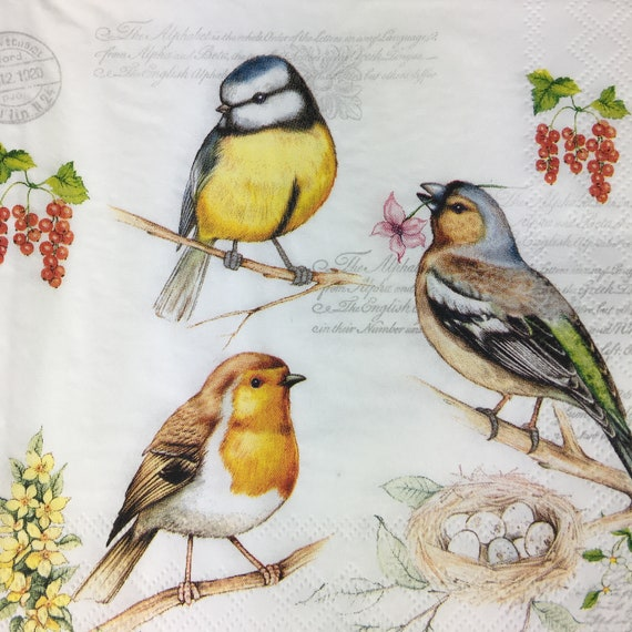 Ambiente Paper  party Napkins Birds On Twig Pack Of 20 3 Ply Luxury Serviettes