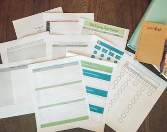 Level 1 Family Finance Planner Workbook/ Budget/ Monthly Planner/ Money Organizer/ Planner Budget/ Debt Payoff/ Finance