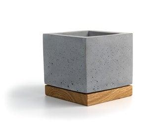 Concrete Cube Planter | Pen Holder| Make Up Brushes Stand| Solid Wood Base + Preserved Scandinavian Reindeer Moss