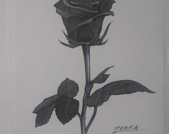 The One Rose Art Print