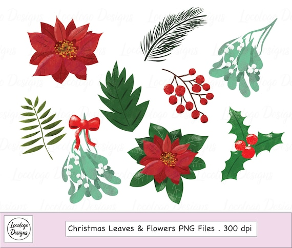 Christmas Flowers Clipart Christmas Poinsettia Etsy