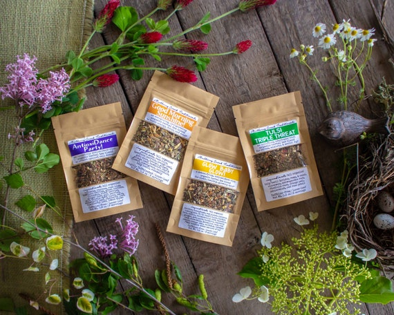 Spring Tea Collection   4 Organic Loose Leaf Medicinal Herbal Teas To Boost Energy, Decrease Stress, & Aid In Detoxification by Etsy