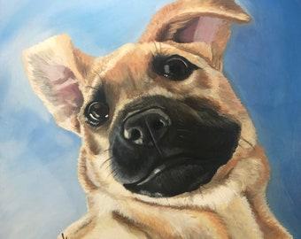 Pet Portraits, Oil Paintings, Dog Lovers, Cat Lovers, Pet Memories, Memorialize My Pet, Must Love Dogs, Custom Paintings