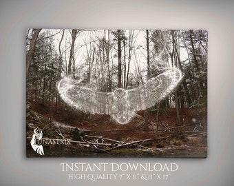 Spirit Animal: Owl, Woodland, Fantasy, Photography INSTANT DOWNLOAD
