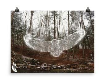 Spirit Animal: Owl, Woodland, Fantasy, Photography POSTER