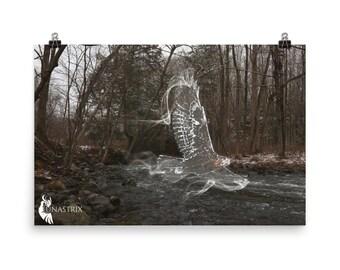 Spirit Animal: Hawk, Woodland, Fantasy, Photography POSTER