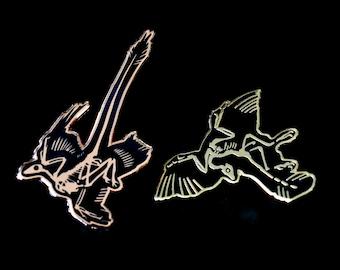 BoneBed Collection: Archaeopteryx & Microraptor