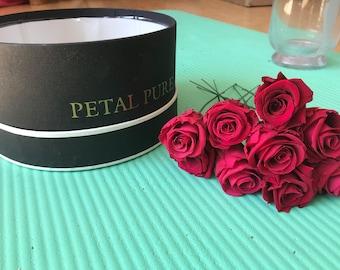 Eternal life long roses 2-3cm