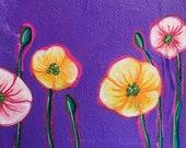 Candy - Miniature Flower ...