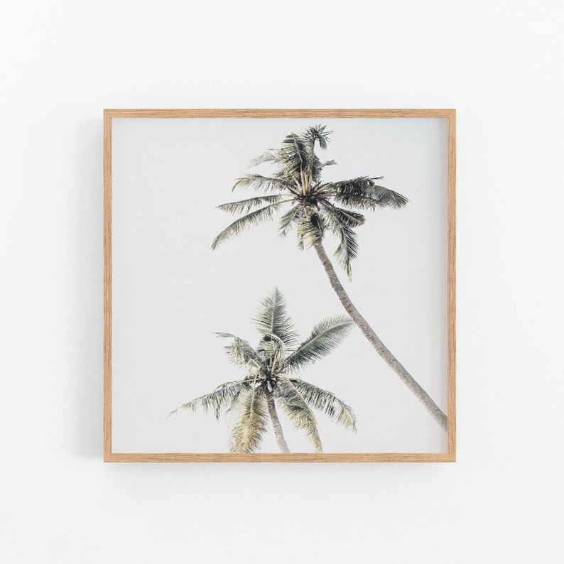 image about Palm Tree Printable identified as Palm Trees Artwork Print, Sq. Palm Tree Artwork Print, Fingers Artwork Print, Palm Tree Printable, Tropical Wall Artwork, Palm Tree Print