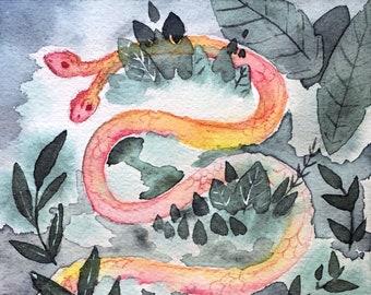 Pink Snake Illustration II