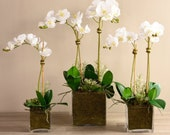 Classic Orchid Succulent Arrangement Artificial Flowers Silk Flower Arrangement Artificial Succulents Faux Flowers for Decoration