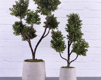 Potted Boxwood Plant | Fake Office Plants | Large Artificial Plants For  Decorating | Desert Decor |Artificial Succulents | Faux Urban Decor