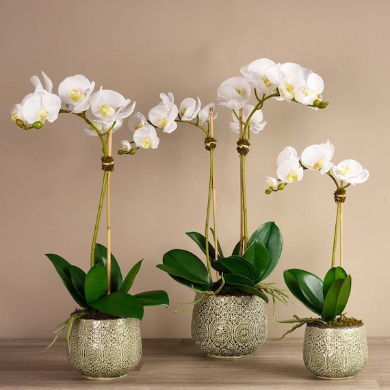 Marrakech Silk Faux Tall White Orchid Flower Arrangement With Etsy