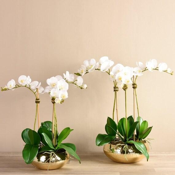 Large Luxury Silk Artificial White Orchid Flower Arrangement Etsy