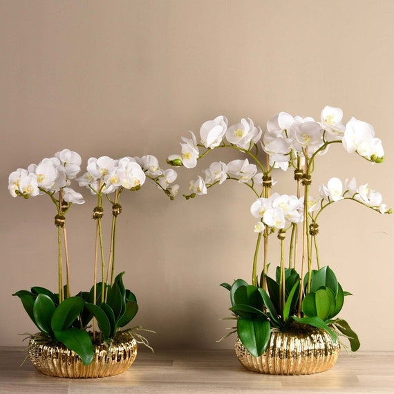 Royal Silk Faux White Orchid Flower Arrangement With Gold Etsy