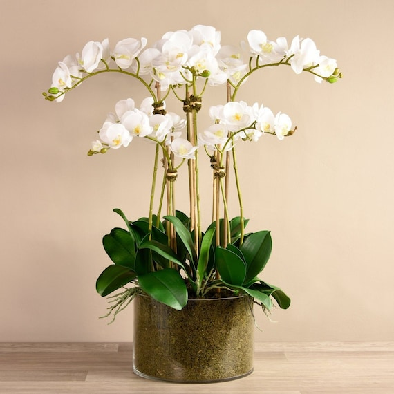 Large Tall Silk Faux White Orchid Flower Arrangement With Etsy