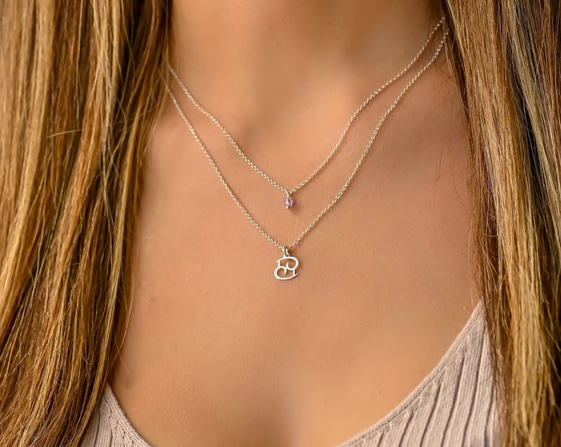 Sagittarius Zodiac Sign Necklace Dainty Layered Birthstone Silver Necklace Double Necklaces for Women Layered Necklace Set Silver