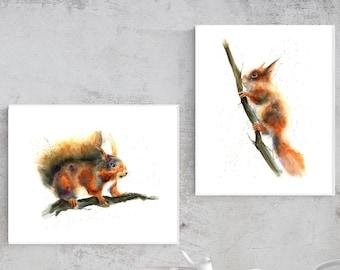 ANIMALS: sets & single
