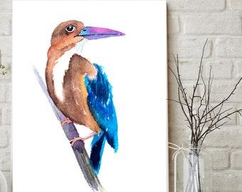 Kingfisher Bird artwork print watercolor painting minimalist watercolour art wall decor Kingfisher
