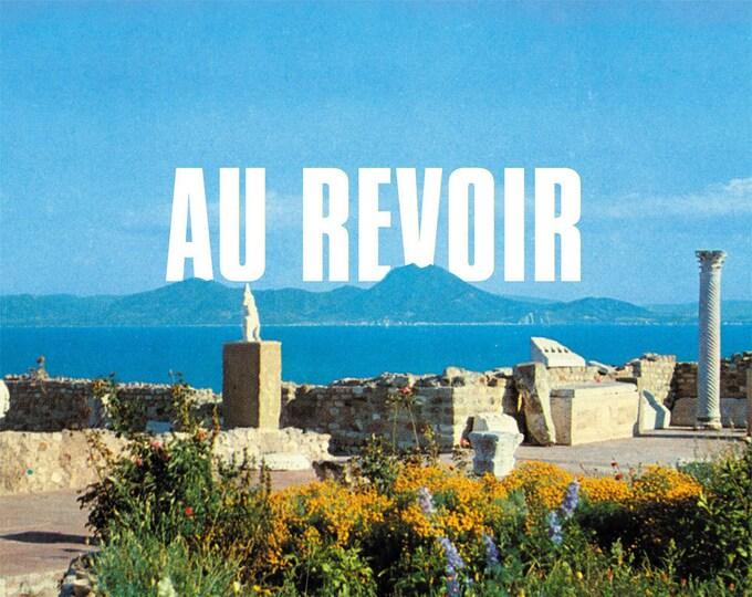 """Les Agamemnonz """"Au Revoir"""" LP"""