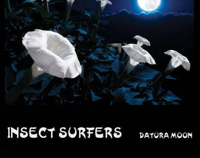 "Insect Surfers ""Datura Moon"" LP (Purple)"