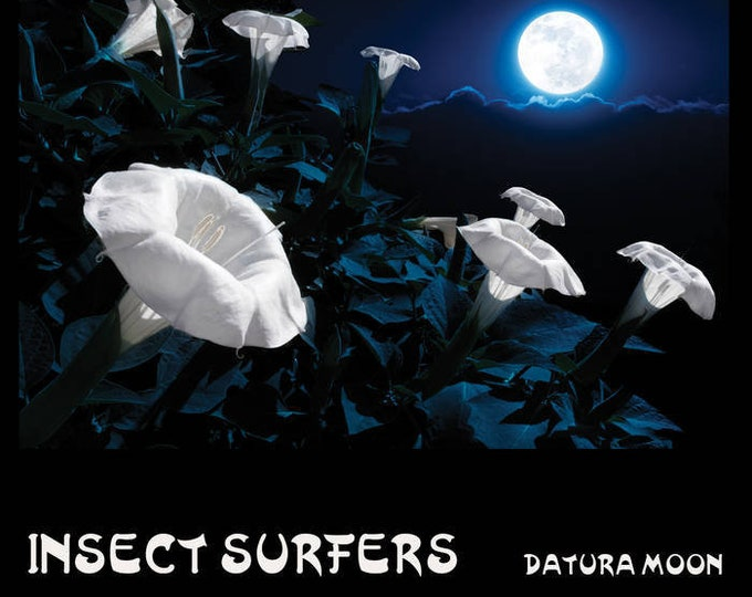 "Insect Surfers ""Datura Moon"" LP (Limited Edition, Purple Vinyl)"