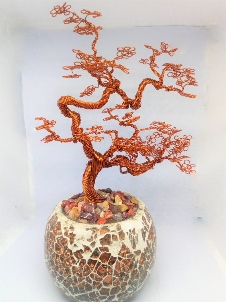 Xmas Sale Was 65 Now 45 Meandering Maple Bonsai Tree Made Etsy